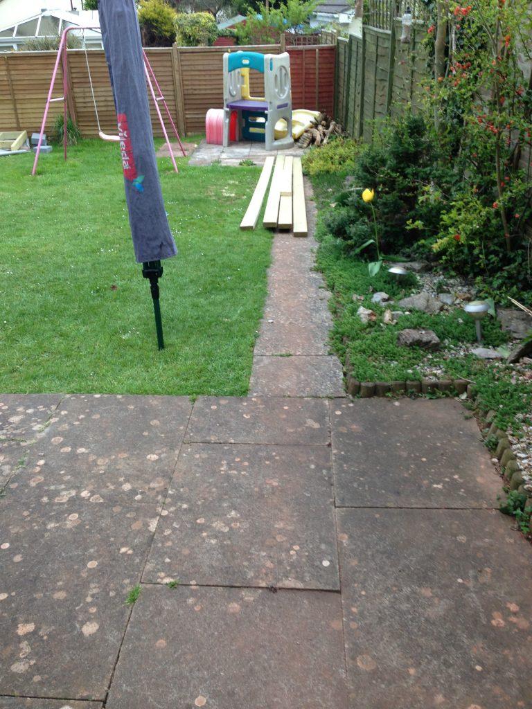 Old Garden 6