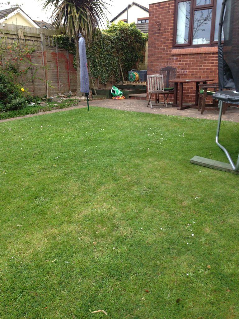 Old Garden 3