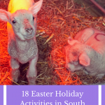 18 Easter School Holiday Activities in South Devon