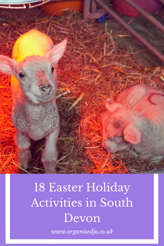 18 Easter school holiday activities taking place across South Devon