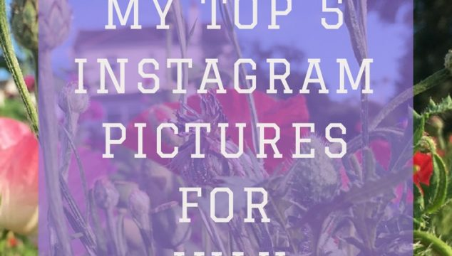 My Top 5 Instagram Pics – July